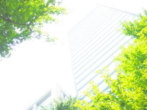 ビルを並木越しに下から見上げる