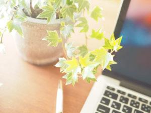 PCと観葉植物の鉢