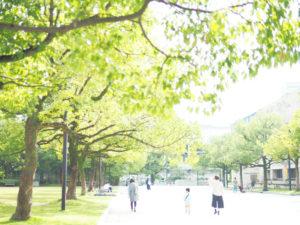 新緑の公園を歩く家族